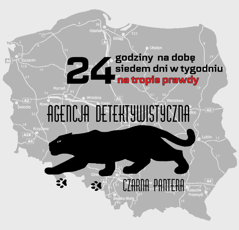 Usługi detektywistyczne Polska